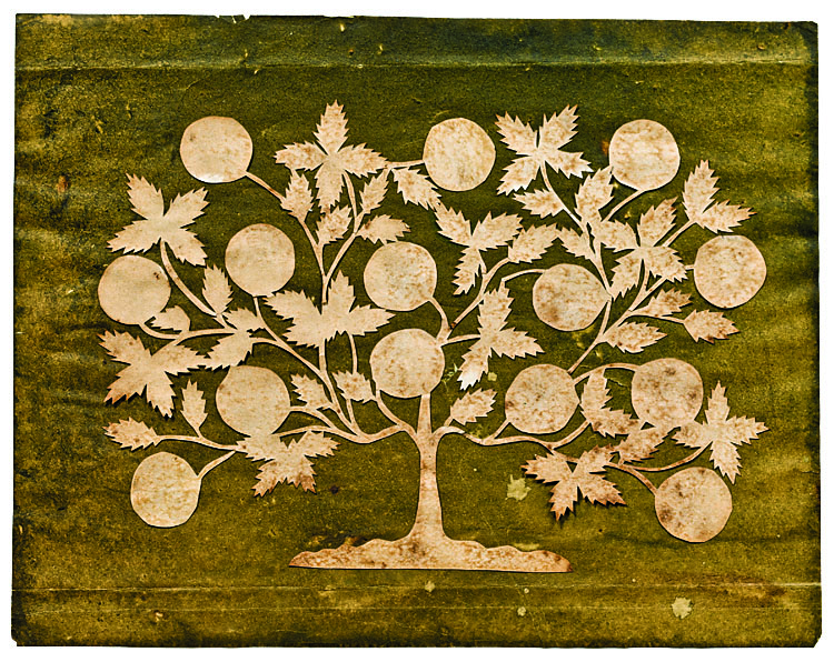 """A Cutwork Tree of Life in the Manner of Hannah Cohoon"""